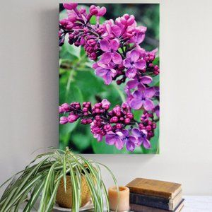 """Lilacs After the Rain"" Original Photography Print"